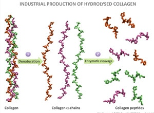 Science - HowOurProductsWorks Img1
